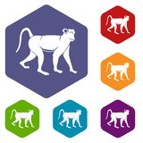 Monkey icons set hexagon Stock Image