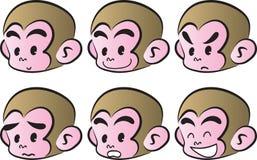 Monkey il fronte Fotografie Stock Libere da Diritti