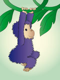 Monkey illustration royalty free stock photo
