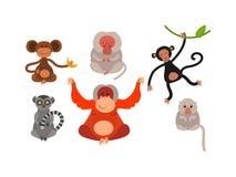 Monkey  illustration Stock Photo