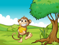 Monkey. Illustration of a monkey holding bananas in the field Stock Image