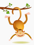 Monkey illustration Stock Photography