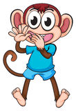 A monkey Stock Image