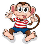 A monkey Stock Images