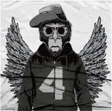Monkey a ilustração gráfica do T, gráficos do t-shirt, vetores Foto de Stock