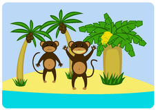 Monkey_island Obraz Stock