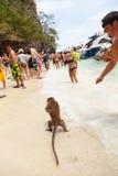 Monkey Island in Pang Nga, Thailand Royalty Free Stock Photos