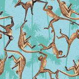 Monkey jungle seamless pattern Royalty Free Stock Photography