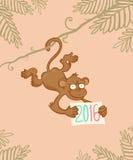 Monkey in jungle Royalty Free Stock Photo