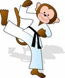 Monkey Karate Stock Photos