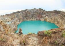 Monkey on Kelimutu with lakes Tin and Tap Stock Image