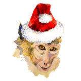 Monkey king portrait in a cool Christmas hat. Merry Xmas and Happy New Year Greeting card design with illustration of monkey king portrait in a cool Christmas Stock Photography