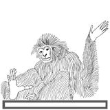 Monkey langur hand drawn on white background royalty free illustration