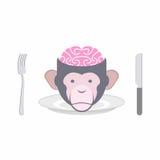 Monkey le plat interdit par cerveaux du Chinois oriental de cuisines, Indo Images libres de droits
