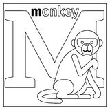 Monkey, letter M coloring page. Coloring page or card for kids with English animals zoo alphabet. Monkey, letter M vector illustration Stock Photography