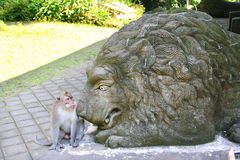 Monkey with lion statue Royalty Free Stock Image