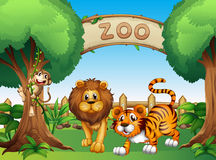 A monkey, a lion and a tiger inside the wooden fence Stock Photo