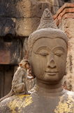 Monkey Loves Buddha Royalty Free Stock Photography
