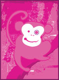 Monkey Madness Electric Pink Stock Photos
