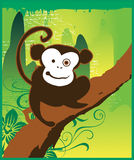 Monkey Madness Jungle Stock Image