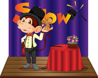 Monkey magician Stock Images