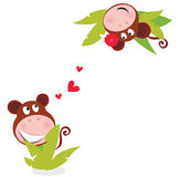 Monkey male and female in love Royalty Free Stock Photography