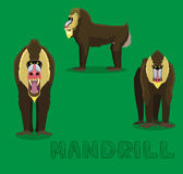 Monkey Mandrill Cartoon Vector Illustration