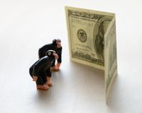 Monkey and money Stock Image