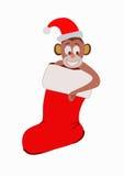 Monkey, monkey in the Christmas sock stock photo