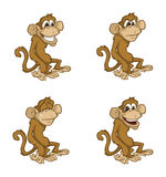 Monkey moods Stock Image
