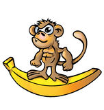 Monkey muscle cartoon. With banana Royalty Free Stock Photo