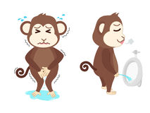 Monkey need a pee and standing peeing Royalty Free Stock Image