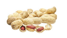 Monkey nuts (Peanuts) Royalty Free Stock Photography