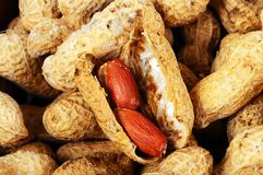 Monkey nuts in shells. Royalty Free Stock Images