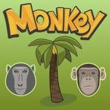 Monkey, Palm Tree, Vector Illustration Royalty Free Stock Image