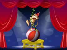 A monkey performing at the circus Stock Photography