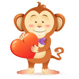Monkey pet  holding heart Stock Image