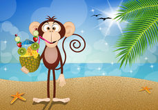 Monkey with pineapple drink on the beach Royalty Free Stock Image