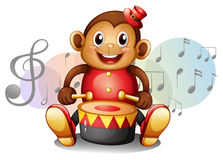 A monkey playing with the drum Royalty Free Stock Image