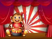 A monkey playing with a musical instrument at the stage Royalty Free Stock Photo