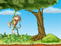 A monkey playing with the vine plant stock illustration
