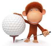 The monkey plays golf Stock Photos