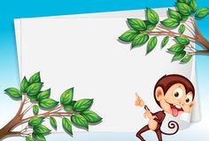 A monkey pointing the empty paper Royalty Free Stock Photography
