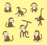 Monkey Poses Cartoon  Stock Images