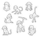Monkey Poses Monochrome Cartoon Vector Illustration Stock Image