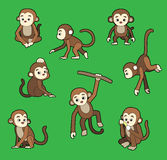 Monkey Poses Stroke Cartoon Vector Illustration Royalty Free Stock Images