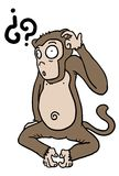 Monkey question Stock Photos