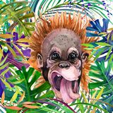 Monkey in the rainforest. watercolor tropical nature illustration. wildlife. royalty free illustration