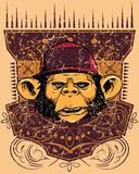 Monkey rapper Royalty Free Stock Photos