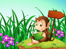 A monkey reading a book beside the arrowboard Stock Image